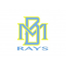 Myrtle Beach Rays - Auto Decal